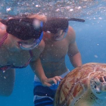 Barbados turtle Ali Han
